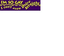 I'm So Gay I can't even Drive Straight Vintage 3X11 1/2 Vinyl Sticker  - $4.50