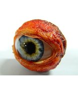 Realistic Life Size Human/zombie Eyeball Ring with Eye Lids for Hallowee... - $15.99