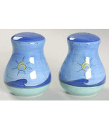 BRUSHES K.I.C. HAND PAINTED Salt & Pepper Set Collectible Blue Green Sto... - $19.99