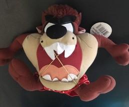 Warner Bros Looney Tunes Taz Tasmanian Devil Valentine stuffed Gift Hold... - $9.89