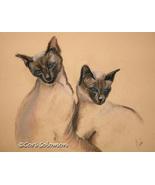 Siamese Cat Art Pastel Drawing Solomon - $199.00