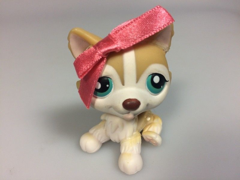 Littlest Pet Shop Husky Puppy Dog Lps 386 And 35 Similar Items