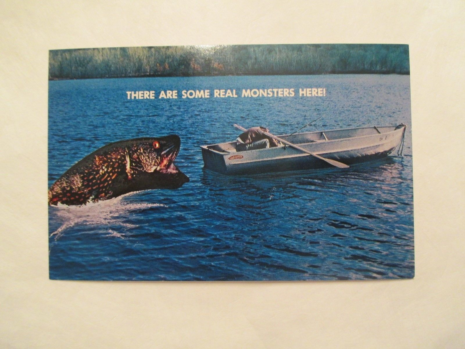 There are some real monsters here Fish Fishing Exaggerated  Postcard