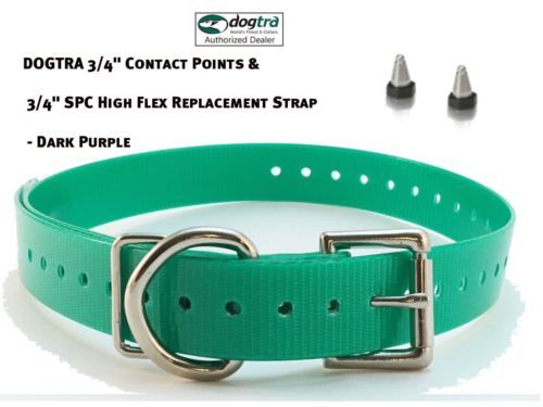 """DOGTRA 3/4"""" Contact Points & 3/4"""" SPC High Flex Replacement Strap - Green"""