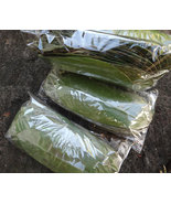 200 Soursop / Graviola (Annona Muricata) Dried Leaves TEA (Free Shipping) - $19.50