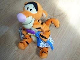 Star Bean Disney Winnie the Pooh Tigger Bean Bag Plush Butterfly Net New - $18.00