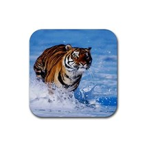 Bengal Tiger Animal (Square) Rubber Coaster - $2.99