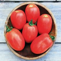 SHIP From US, 50 Seeds Granadero F1 Hybrid Tomato, DIY Healthy Vegetable AM - $39.99