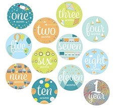 Baby Boys Monthly Milestone Belly Stickers Photo First Year Set - $12.19