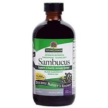 Nature'S Answer Sambucus Nigra Black Elder Berry Extract - 8 Fl Oz - $19.59