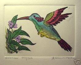 "Dan Mitra S/N Etching "" Violet Ear "" Hummingbird LE - $14.19"