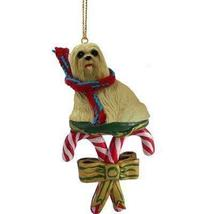 Conversation Concepts Lhasa Apso Blonde Candy Cane Ornament - $13.99