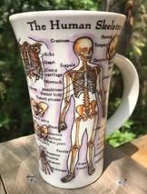 "Dunoon 6"" Mug Human Body Muscles Skeleton Anatomy English Fine Stoneware   - $47.00"