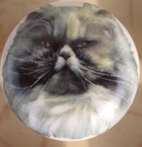 Cabinet Knobs W/ Persian Cat #2 @Pretty@ - $5.25