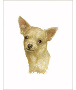 10 Hand Printed Chihuahua Dog Blank Note Cards with Envelopes in Gift Box - $9.95