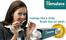 Himalaya Herbal Dental Cream Ayurvedic Toothpaste LOWEST PRICE 100 gm - $35.09