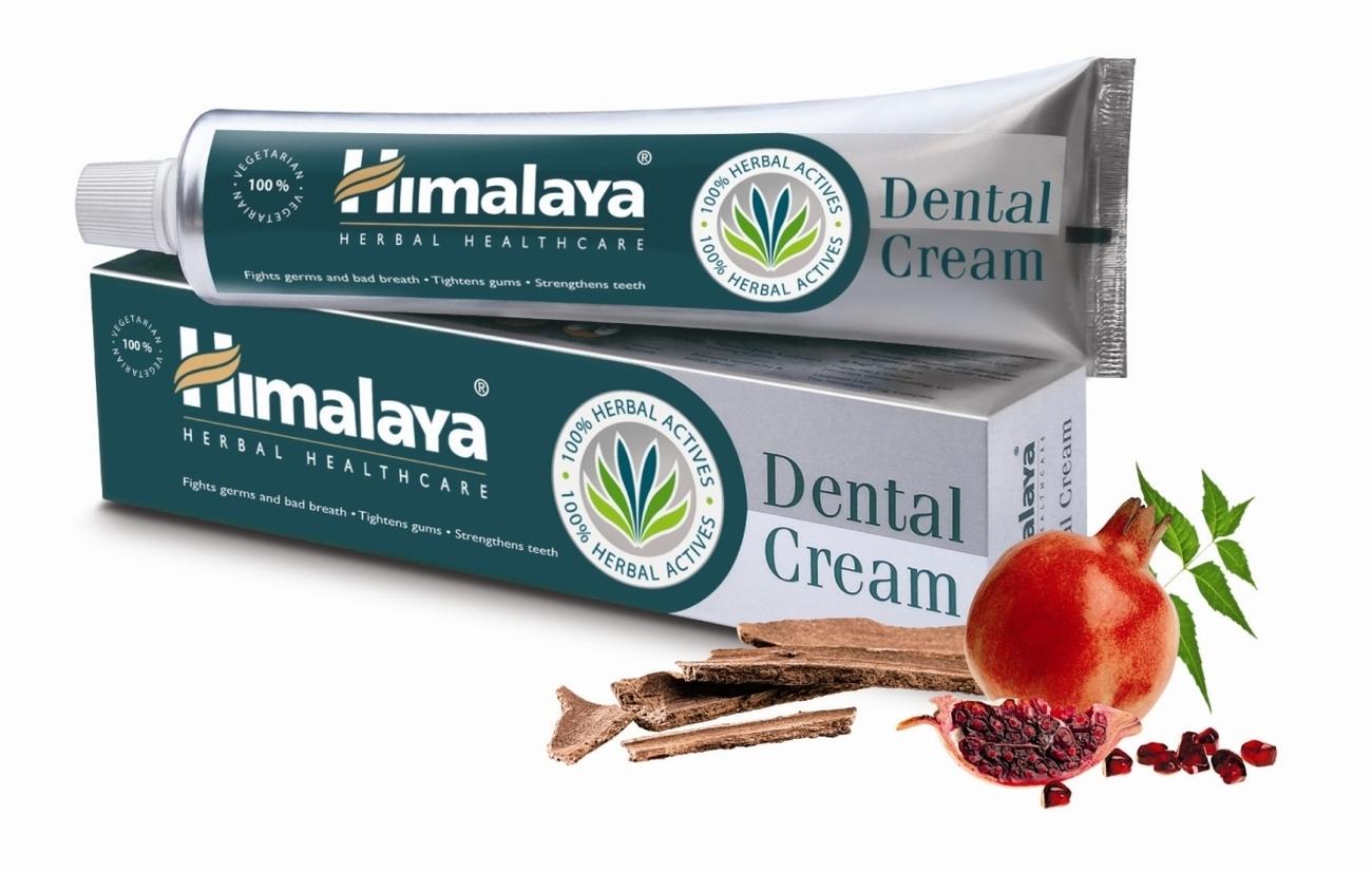 Himalaya Herbal Dental Cream Ayurvedic Toothpaste LOWEST PRICE 100 gm