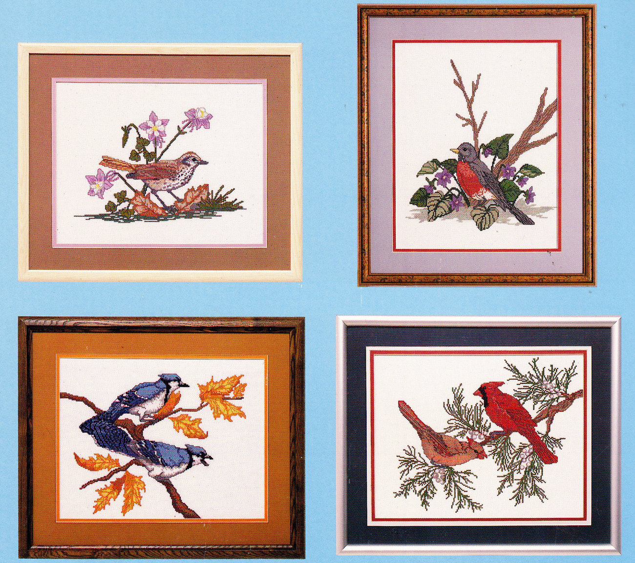 CROSS STITCH NEEDLEPOINT SOMETHING SPECIAL BIRDS COLLECTI - $5.95