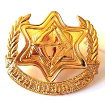 IDF Israel Army Pin Badge Official Education & Youth Corps Beret Emblem Gilded - $6.71