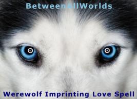 xlp Werewolf Imprinting Bonding Love Spell + Sex Appeal Passion Magick H... - $159.00