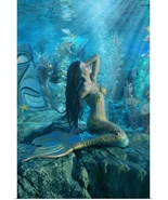 Poster Print Wall Art entitled Mermaid 20x30 image size matte paper - $48.00