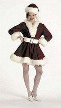 Velvet Perky Pixie Xlarge Costume Size 16 to 18 - $143.07