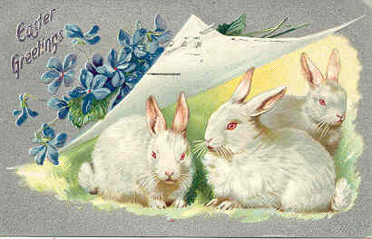 Easter Bunny Greetings Vintage 1909 Tucks Post Card