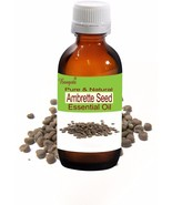 Ambrette Seed Pure Natural Essential Oil- 50 ml Abelmoschus moschatus by... - $56.72