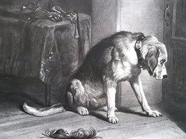 DOG English Mastiff in Suspense by Landseer - 1875 Antique Print - $30.60