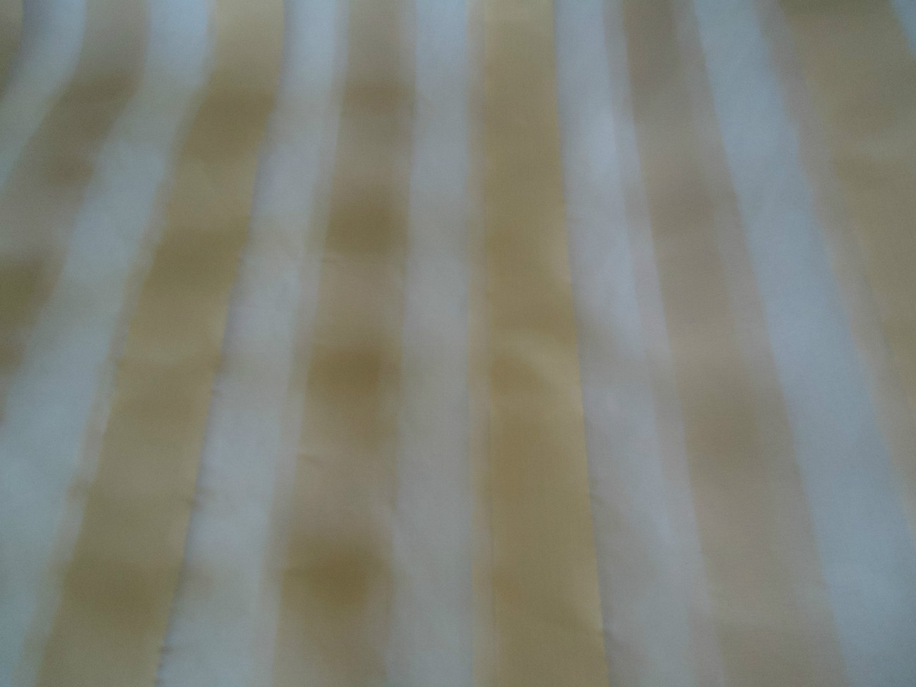Burst of Champagne Sheer Stripped Fabric  5 Yards