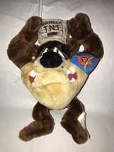 "Looney Tunes Taz Tazmanian Devil Plush 12"" NWT 1998 TNT Dynamite Ace Toy - $29.69"