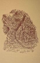 American Water Spaniel Dog Art Word Drawing 40  Kline Draws Dogs Name Free. GIFT - $49.95