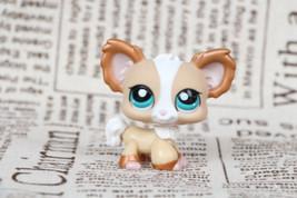 LPS #1082 Tan & Bronze Shimmer Chihuahua Puppy Dog Blue Eye  - $4.94
