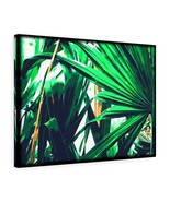 "Saw Palmetto Canvas Artwork 24"" x 18"" Gallery Wrapped Print by BL Lawson - $69.99"