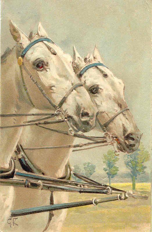 A Matched Pair Paul Finkenrath of Berlin Vintage Post Card  - $7.00