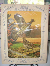 Portfolio of Prints, Ideals Gallery, Grouse, Goose, Pheasant, Duck, old - $56.76