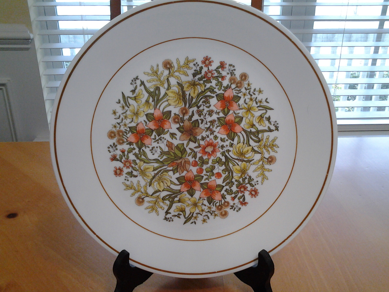 """Corelle Indian Summer Plate 10.25""""  The Expresssions Product Line 1977"""