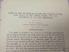 1902 27 Page Report Silversides of the Genus Menidia - $7.99