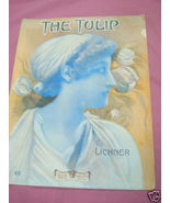 1908 Tulip Sheet Music - $7.99