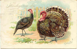 Old Tom Turkey Artist Wealthy Vintage 1908 Post Card - $6.00