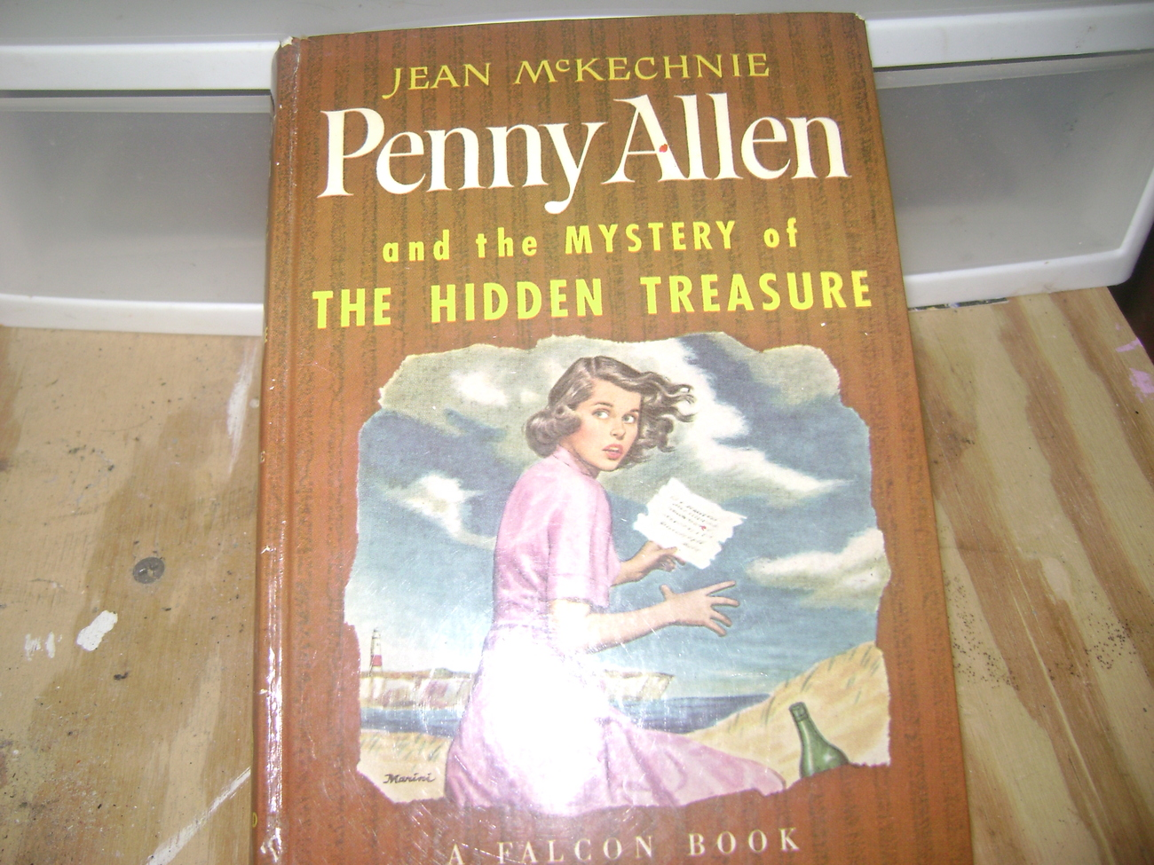 Primary image for Penny ALlen and the Mystery of the Hidden Treasure