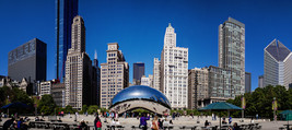 "Chicago Bean ""Sky Gate""  City Skyline     2.5 x 4.5  Fridge MAGNET - $4.99"