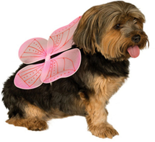 Pink Fairy Wings for Dogs Halloween Costume  Size Medium-Large
