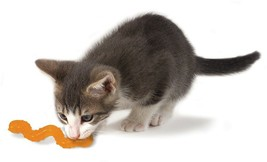 OrkaKat Wiggle Worm Cat Toy - $5.21