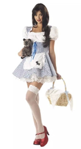Adult Storybook Sweetheart Costume By California Costume - $19.99
