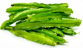 20 WINGED BEAN seeds; Asparagus pea, Wing pea, Four Angled bean - $15.00