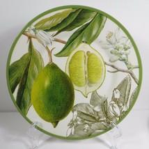 "Williams Sonoma Botanical Citrus Fruit Green 1 Salad Plate Lime 9"" NWOT 481728 - $42.99"