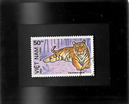 Tchotchke Framed Stamp Art - Exotic Asian Wildlife - Indian Tiger - $7.99