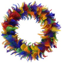 Feather Wreath rainbow Party Accessory  1 count - ₨674.78 INR