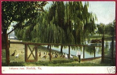 Primary image for NORFOLK VIRGINIA Lafayette Park Geese VA